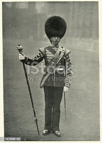 Vintage photograph of the Drum major, 3rd Battalion Grenadier Guards, British army, 1895. Sergeant drummer, F. McCoy