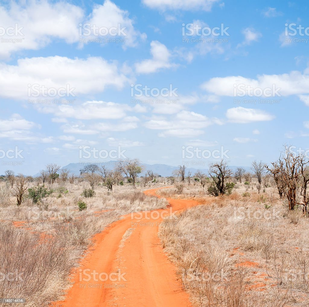 Dry African Dirt Road stock photo