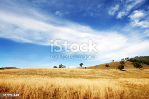 istock Dry and Beautiful 157289449
