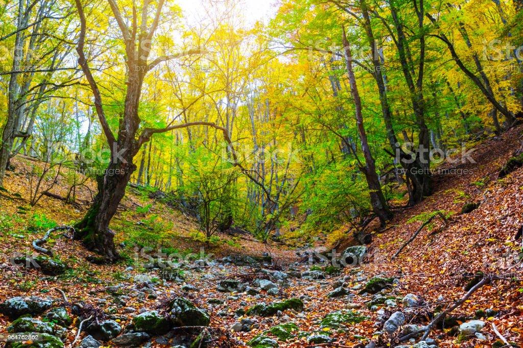 dry autumn mountain canyon landscape royalty-free stock photo