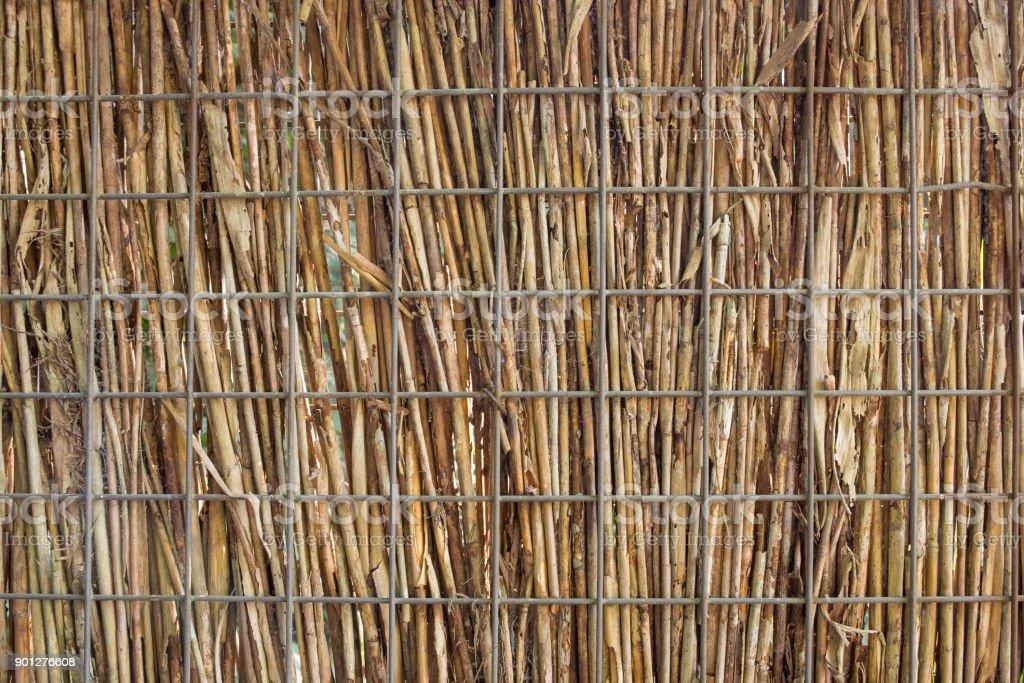 Foto De Troncos De Bambu Seco E Grelha Do Metal Plano De Fundo - Bambu-seco