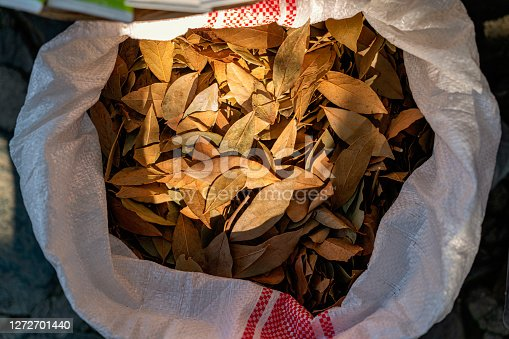Dry Bay Leaves - Laurel aromatic Indian spices