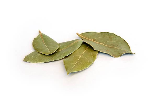 Dry bay Blätter auf Weiß – Foto