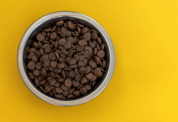 Dry brown pet food for cats or dogs in a metal bowl on a yellow top picture id1256435627?b=1&k=6&m=1256435627&s=612x612&w=0&h=zyneicv7nzbzfxa8tqpn7lu7qer2 a3mliyztxw f5m=