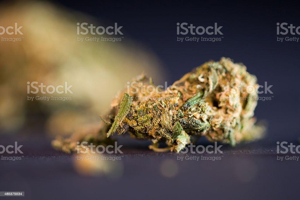 Dry cannabis bud stock photo