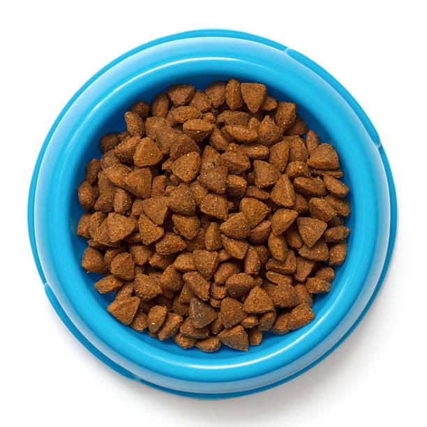 trocken katzenfutter in blau schüssel isoliert auf weiß. - hundenapf stock-fotos und bilder