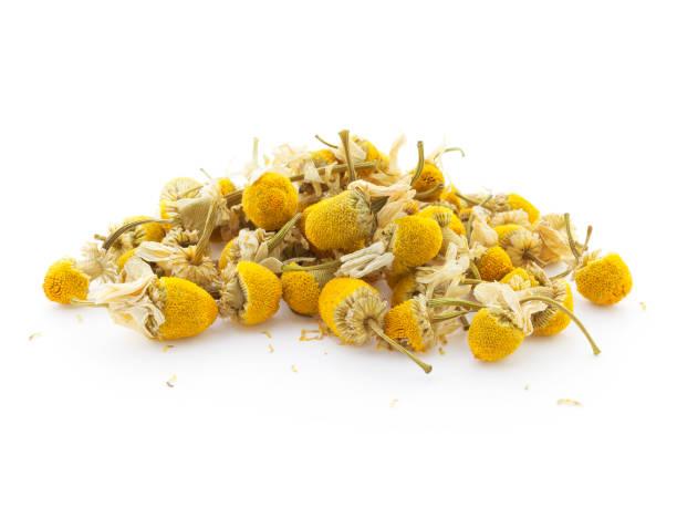 flores de manzanilla secas - planta de manzanilla fotografías e imágenes de stock
