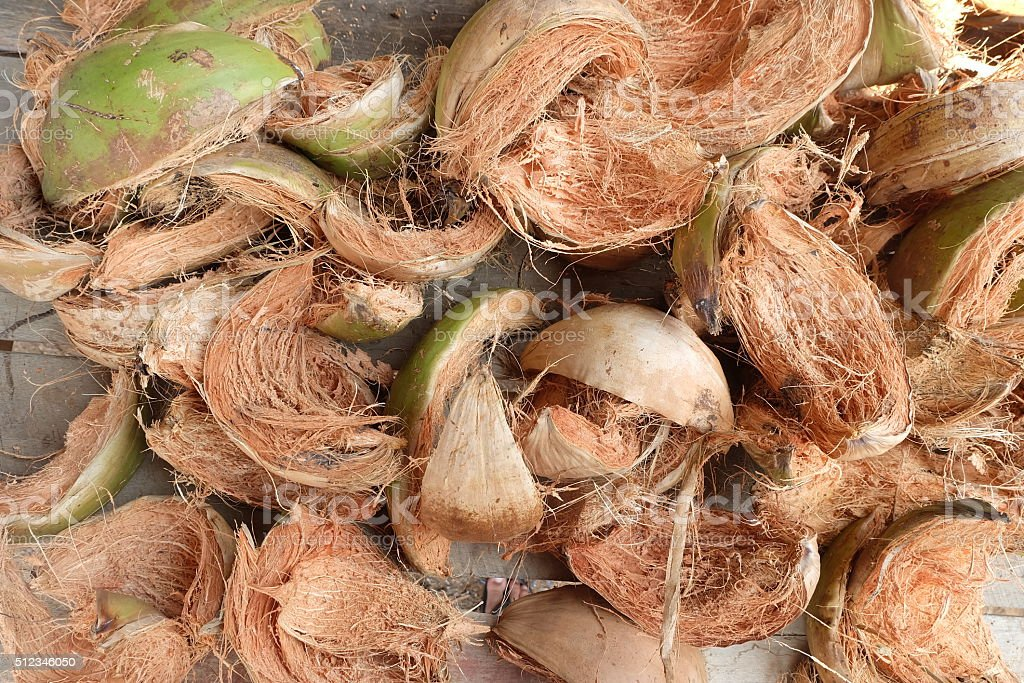 dry coconut husk stock photo