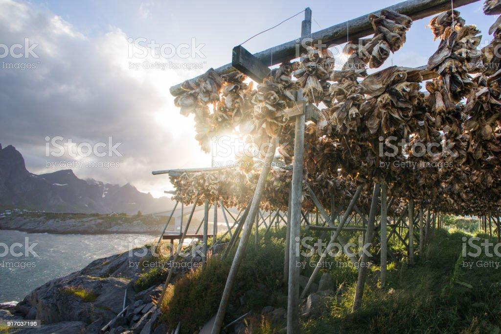 Trocken Kabeljau – Foto