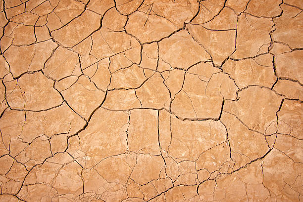 dry cracked earth background, clay desert texture - dry stock photos and pictures