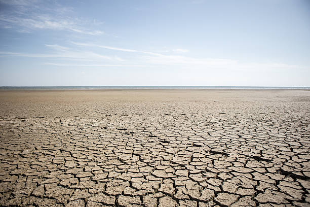 dry cracked earth - dry stock photos and pictures