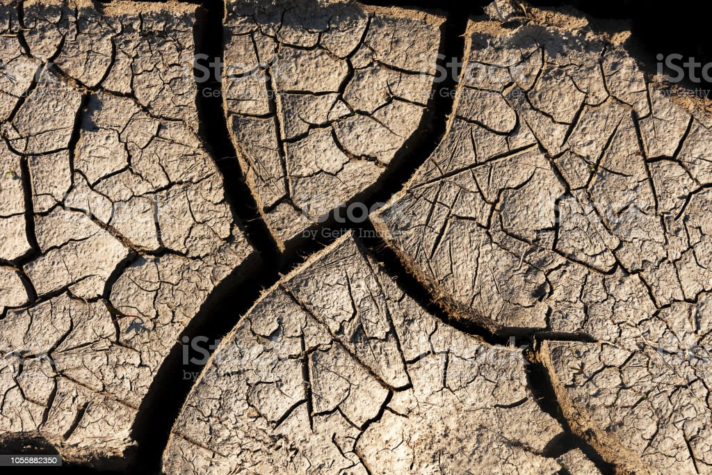 Dry cracked earth texture. Environment, climate drought