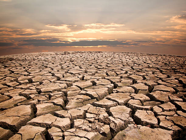 Dry cracked earth view to horizon in drought against sunrise stock photo