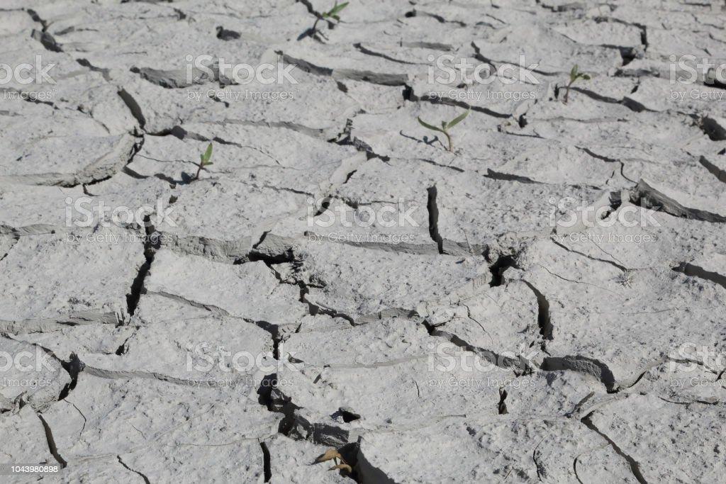 Arcilloso gris agrietado seco disparo en perspectiva durante un día asoleado caliente en el lago artificial del Mediano en el Pirineo Aragonés Español - foto de stock