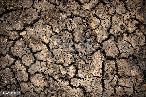 istock Dry cracked ground, Germany 1145083137