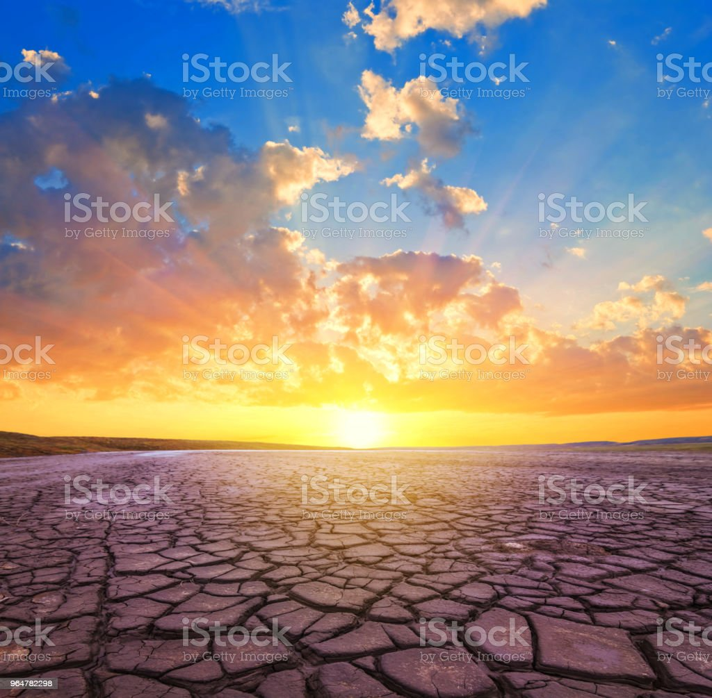 dry cracked saline land at the sunset, natural disaster background royalty-free stock photo