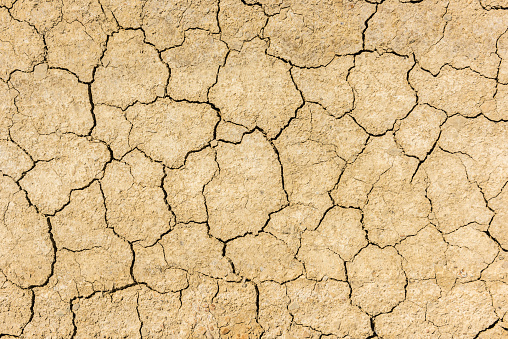 Dry Cracked Soil Background Stock Photo - Download Image Now