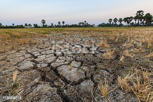 Dry cracked soil ground texture in rice fields