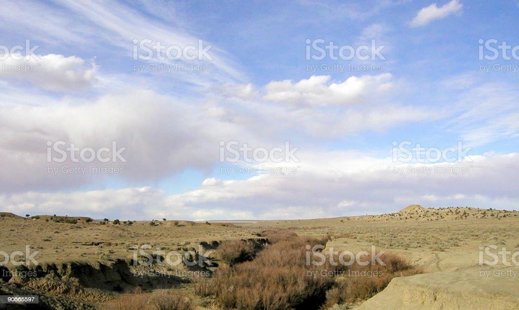 Dry Creekbed royalty-free stock photo