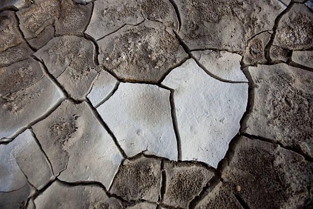 Dry crust stock photo