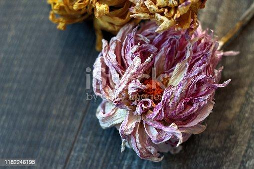 948743278istockphoto dry dahlia flowers on wooden background 1182246195
