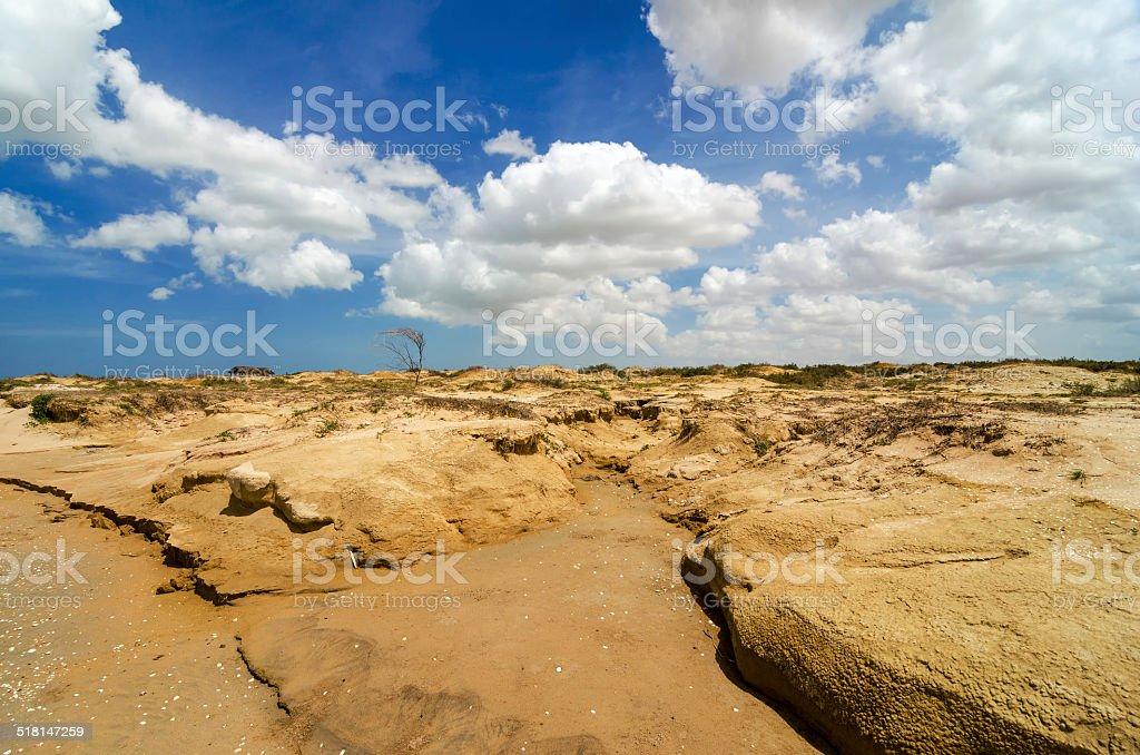 Dry Desert Landscape stock photo