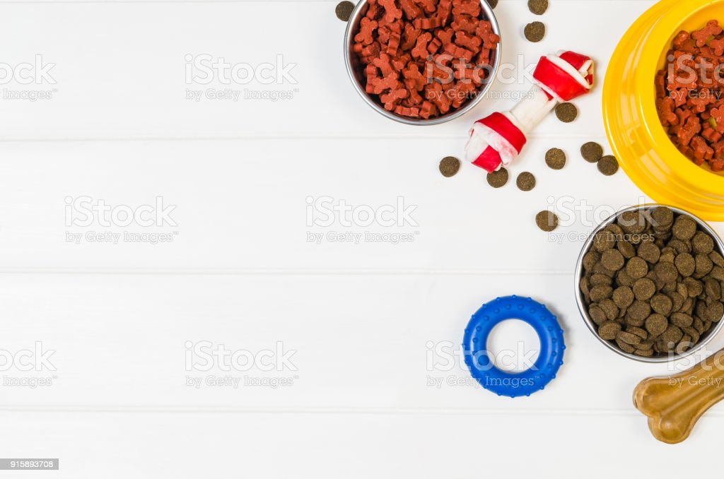 Dry dog food and accessories on white background top view royalty-free stock photo