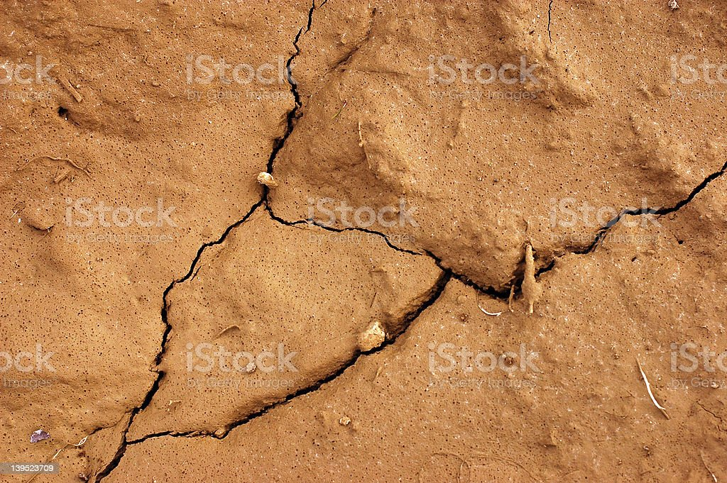 Dry Earth 1 royalty-free stock photo