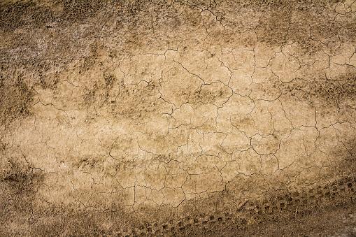 Dry earth surface cracks