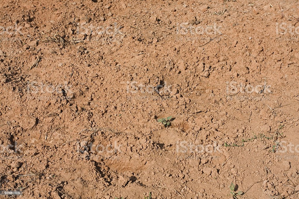 dry field on a farm royalty-free stock photo
