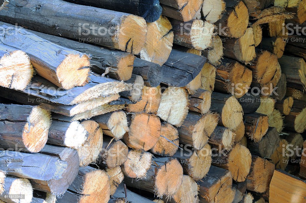 Dry firewood in a pile for furnace kindling stock photo