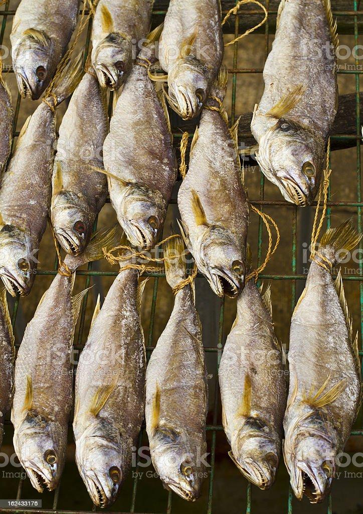 Dry Fish royalty-free stock photo