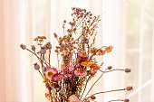 Dry flowers arrangement bouquet of gerbera daisies and leaves brown vintage red colors by house window with retro sunlight