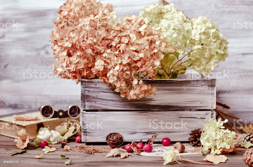 Dry flowers of hydrangea in wooden box - Photo