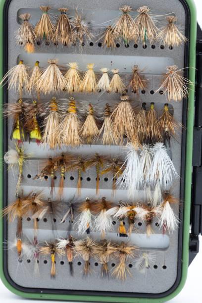 Dry Fly Box Case stock photo