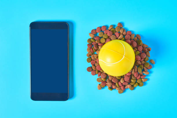 Dry food for pet near smartphone or tablet and rubber tennis ball on picture id1218605436?b=1&k=6&m=1218605436&s=612x612&w=0&h=eohmve9hzv1pbn0evhturqjut1ojxz te cqyih yam=