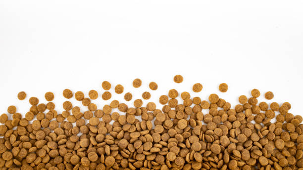 Dry food for pets like cats or dogs on white background stock photo