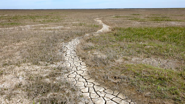 Dry footpath disappears into the void stock photo