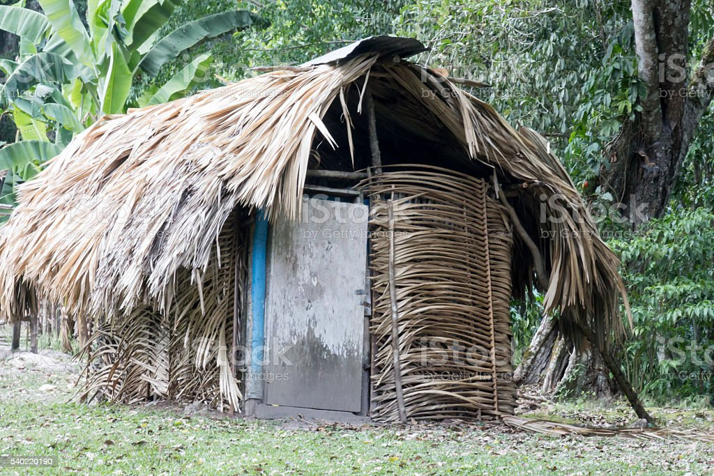 Dry front thatched hut in the jungle stock photo