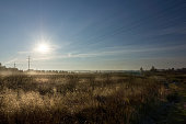istock Dry grass on the field and blue sky. Nature landscape. 1286183521
