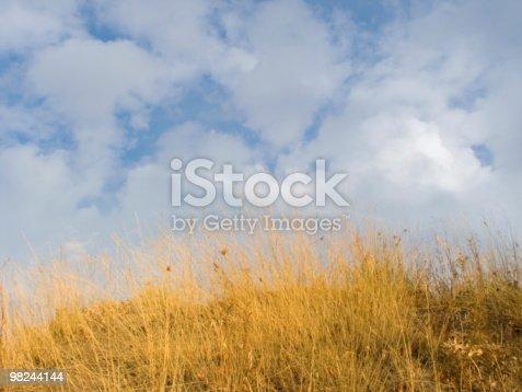 기체상태의 잔디 0명에 대한 스톡 사진 및 기타 이미지