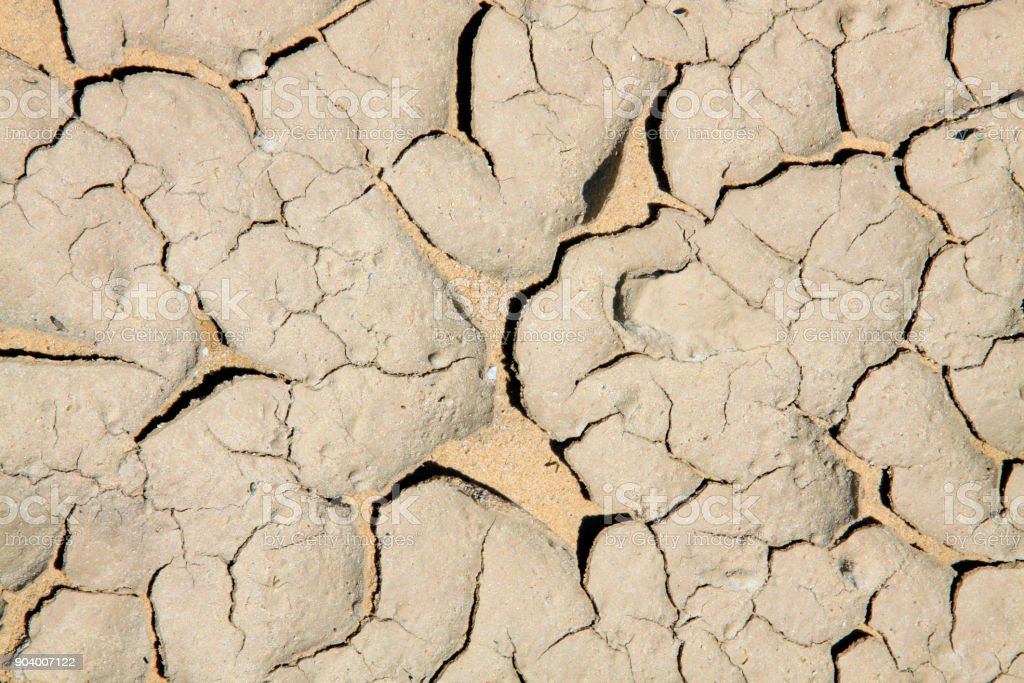 dry ground in the outdoors, closeup of photo stock photo