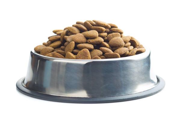 Dry kibble dog food picture id1010847920?b=1&k=6&m=1010847920&s=612x612&w=0&h=684xohwzhpmx391hru5cjngmnpsxkuf2filygmnosgu=