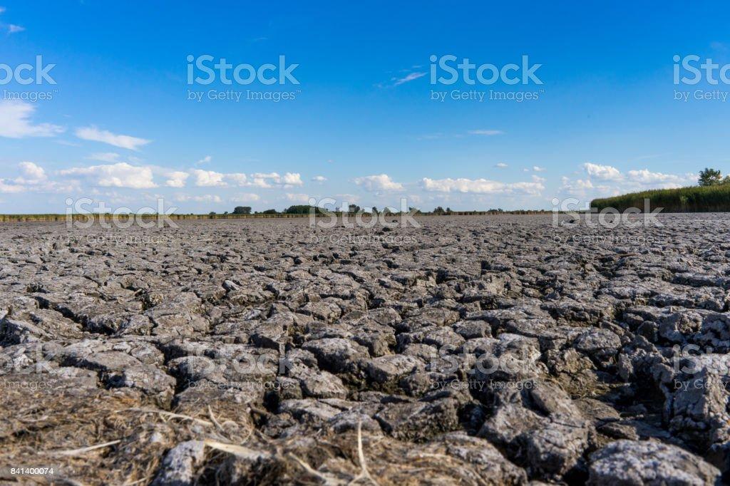 Dry Lake Neusiedl stock photo