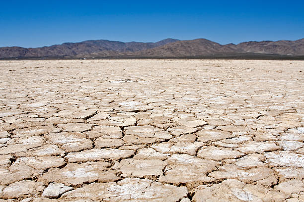 A dry lakebed landscape in front of mountains under blue sky A dry lakebed in the desert surrounded by mountains.file_thumbview_approve.php?size=1&id=5923018 lake bed stock pictures, royalty-free photos & images
