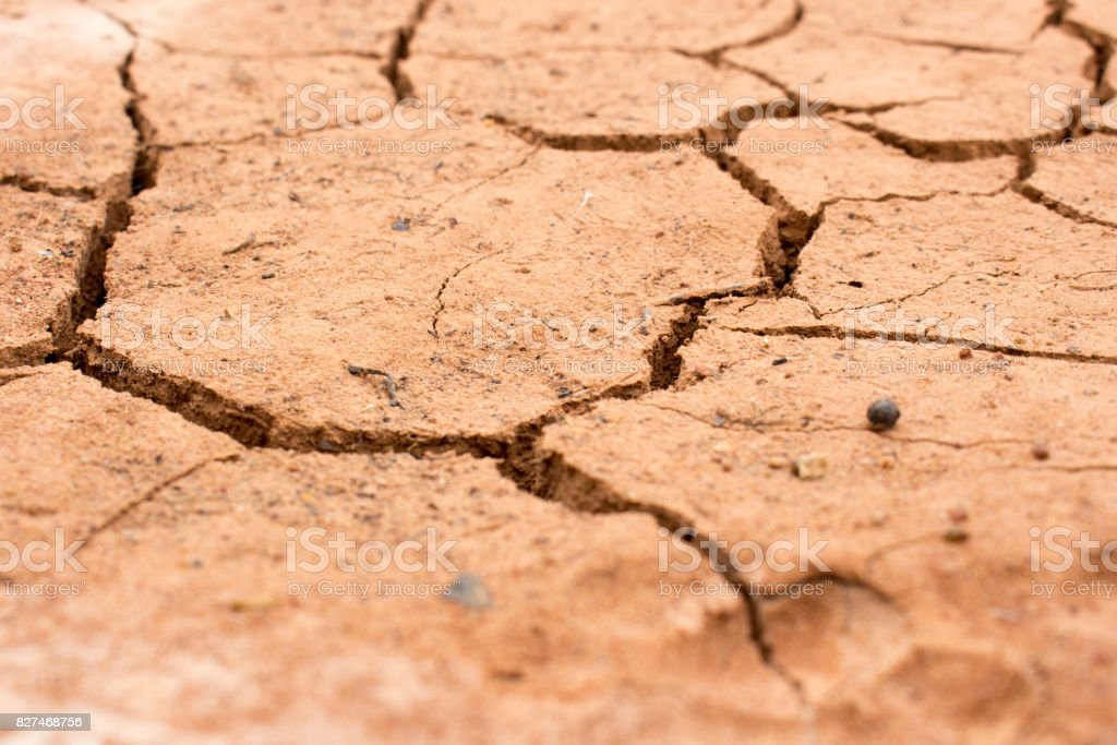 Dry land, Ground caused by drought.