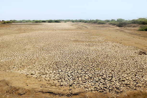 land - afrikanische steppe dürre stock-fotos und bilder