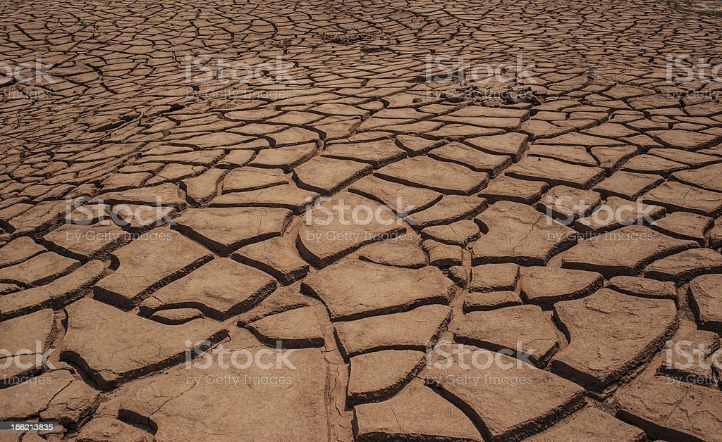 Dry Land with Cracked royalty-free stock photo