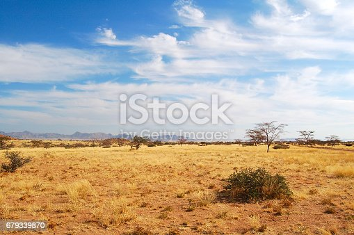istock Dry Landscape in Namibia 679339870