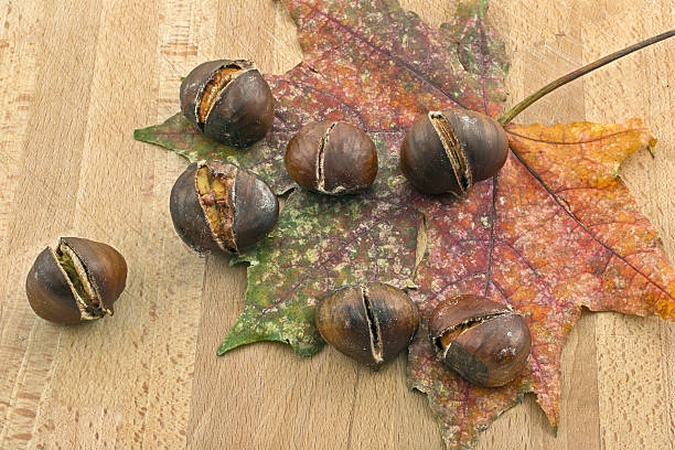 Dry leaf and chestnuts roast chestnuts on a dry leaf cusp stock pictures, royalty-free photos & images